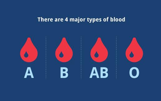 體檢報告科普丨血型