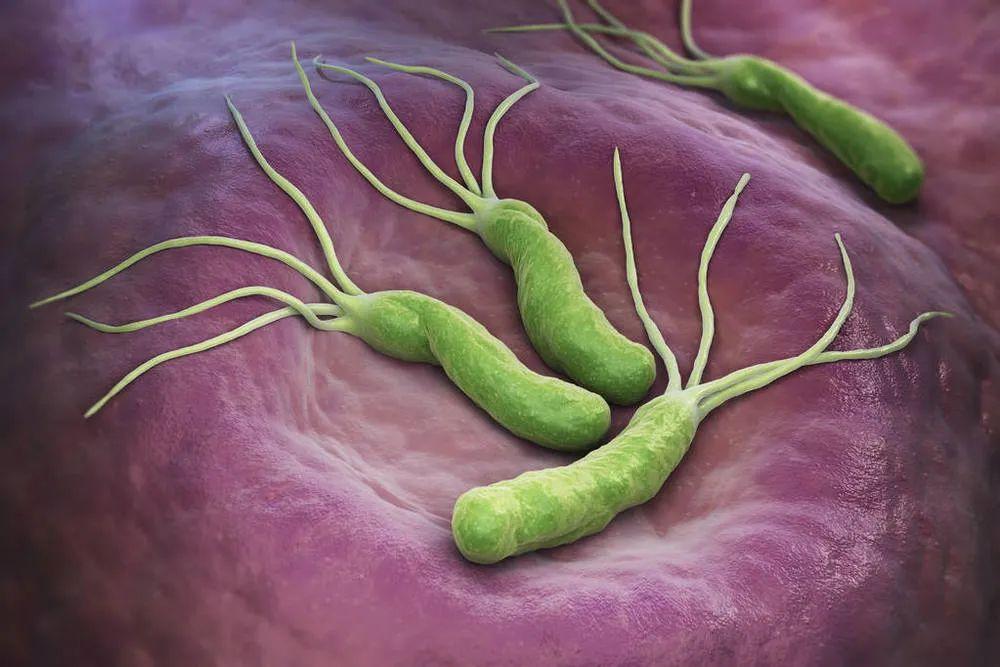 """""""吹口气""""查幽门螺杆菌,数值越大就越容易得胃癌吗?"""